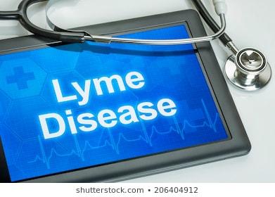 Flåttbitt og Lyme disease